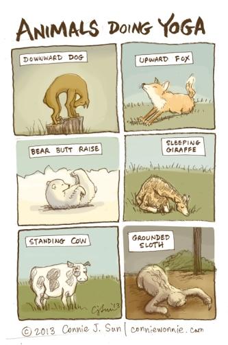 36-drawing-animals-doing-yoga-w500